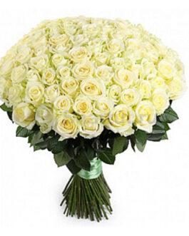 101 белая высокая элитная роза 80 см