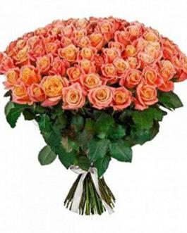 101 роза Мисс Пигги 60 см