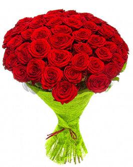 51 красная роза 60 см